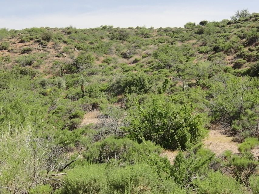 E Manana Road Lot 12, Cave Creek, AZ 85331