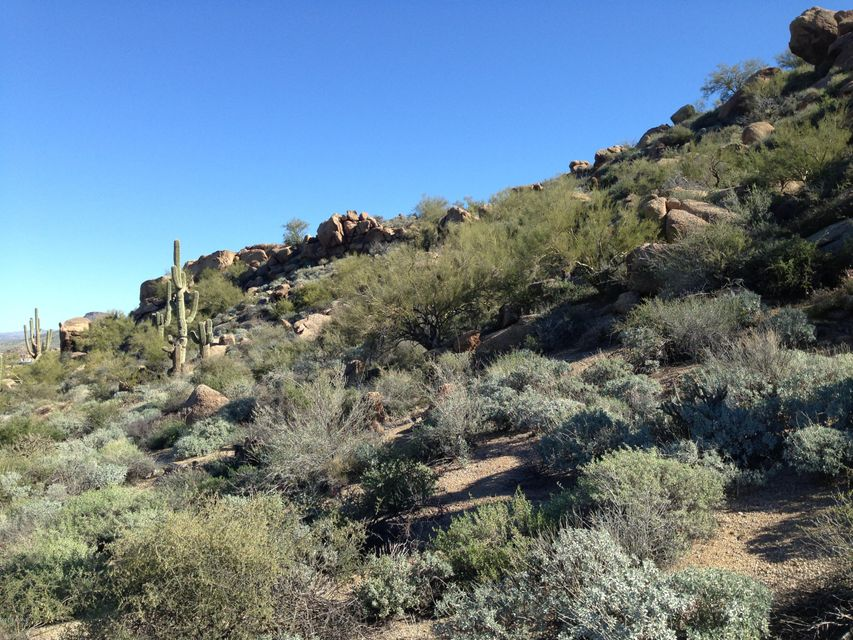 27915 N 103RD Place Lot 149, Scottsdale, AZ 85262