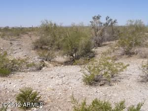 11276 S WILSON Lane Lot 36, Goodyear, AZ 85338