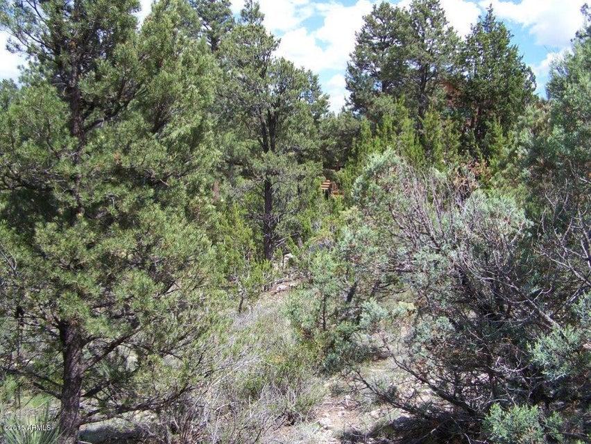 2252 Double Bogey Way Overgaard, AZ 85933 - MLS #: 5295856