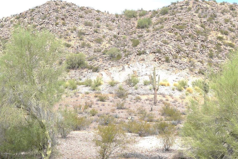 XXXX W DANIEL Road Lot 114, Queen Creek, AZ 85142