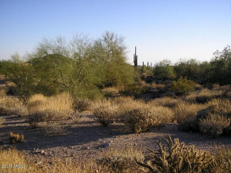 4343 N PINNACLE RIDGE Circle Lot 25, Mesa, AZ 85207
