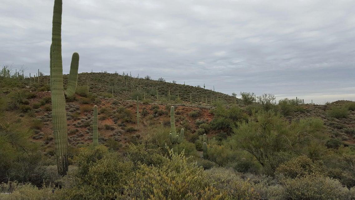 42000 N Fleming Springs Road, Cave Creek, AZ 85331