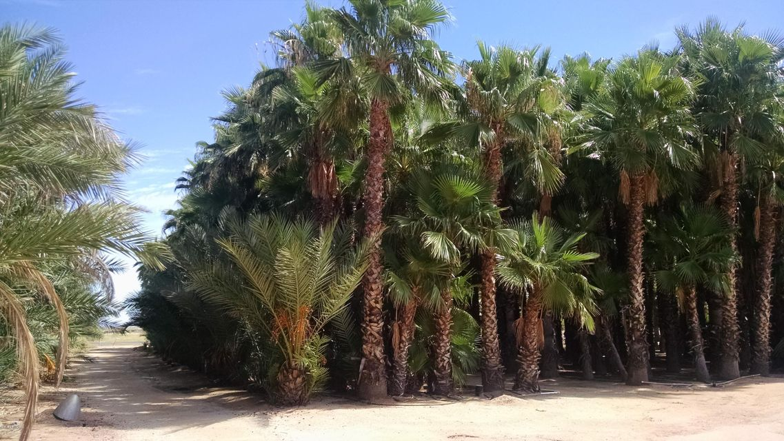 7062 N OVERFIELD Road, Casa Grande, AZ 85194