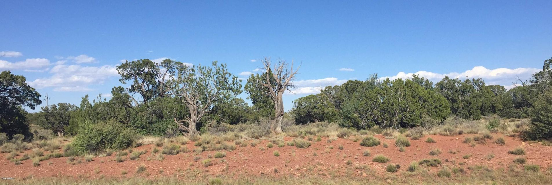 3657 W DEER FOREST Drive Lot 195, Williams, AZ 86046