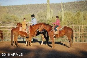 MLS 5453288 2726 E SADDLE MOUNTAIN Road, Cave Creek, AZ 85331 Cave Creek AZ Three Bedroom