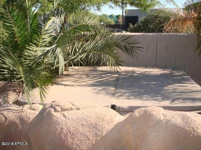 MLS 5455697 267 N Kenneth Place, Chandler, AZ 85226 Chandler AZ Wild Tree