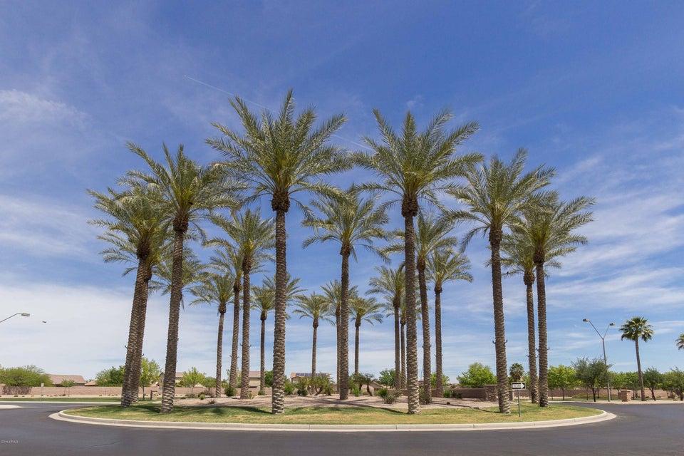 MLS 5474078 44254 W HIGH DESERT Trail, Maricopa, AZ Maricopa AZ Cobblestone Farms