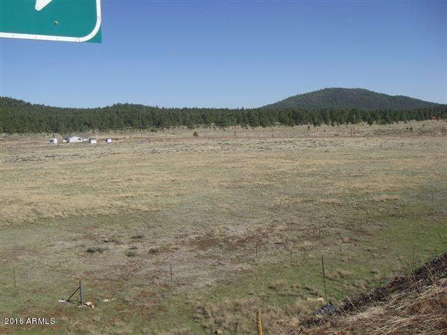 3460 E MOUNTAIN MAN Trail, Williams, AZ 86046