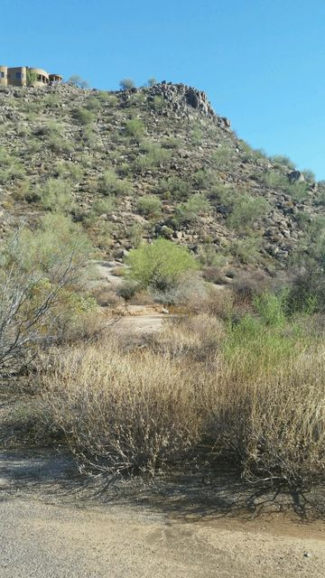 9037 E OMEGA Street, Mesa, AZ 85207