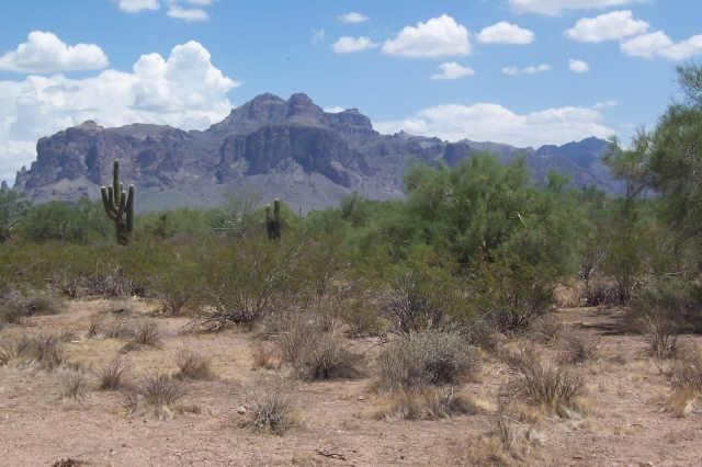 1624 E CONCHO Street Lot 13, Apache Junction, AZ 85119