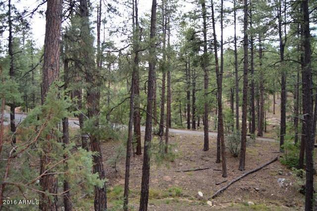 MLS 5484832 5749 W DEARING Road, Prescott, AZ Prescott AZ Equestrian