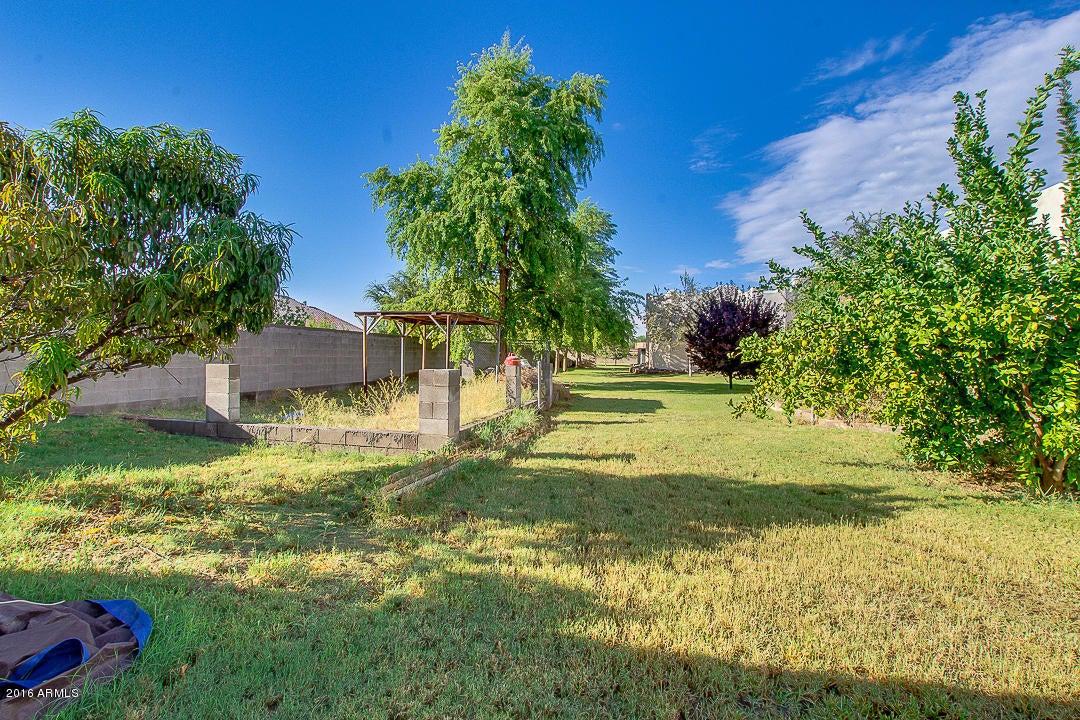 MLS 5501832 16347 W WATKINS Street, Goodyear, AZ Goodyear AZ Equestrian