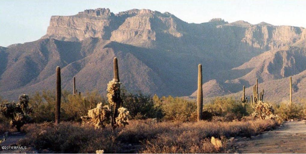 E OPEN SKY Drive, Gold Canyon, AZ 85118