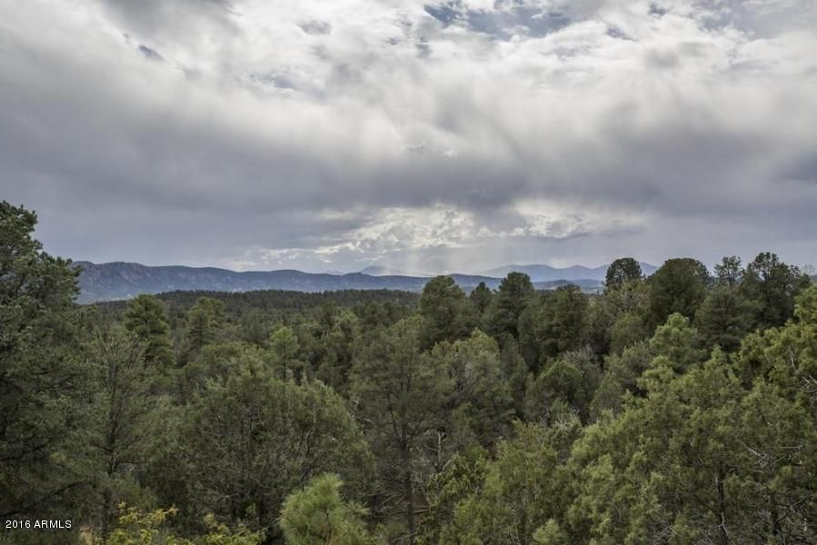 MLS 5507305 112 N SELDOM CREEK Lane, Payson, AZ Payson Horse Property for Sale