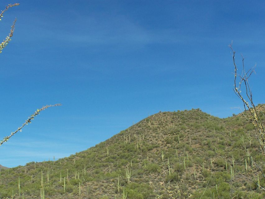 44XXX N Cottonwood Canyon Road Cave Creek, AZ 85331 - MLS #: 5508460