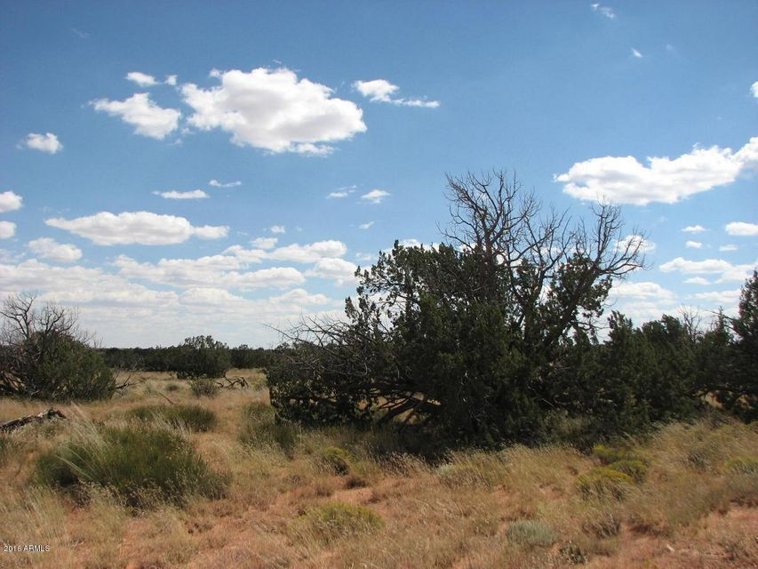 Lot 241 Chevelon Canyon Ranch Overgaard, AZ 85933 - MLS #: 5515048