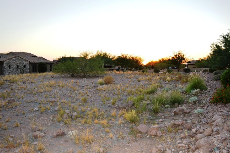 MLS 5401199 2423 S SUNSET VILLAGE Drive, Gold Canyon, AZ Gold Canyon AZ Newly Built