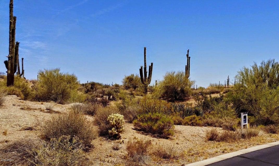 29503 N 111TH Way Lot 19, Scottsdale, AZ 85262