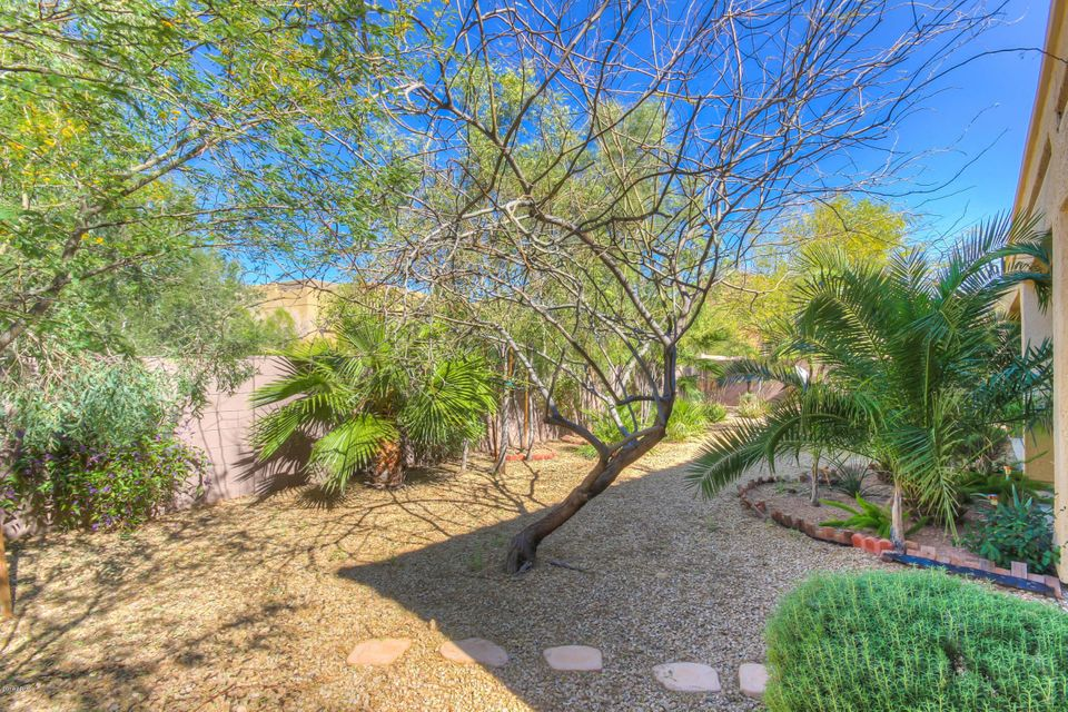 MLS 5515081 2516 W BARBIE Lane, Phoenix, AZ 85085 Phoenix AZ Amber Hills