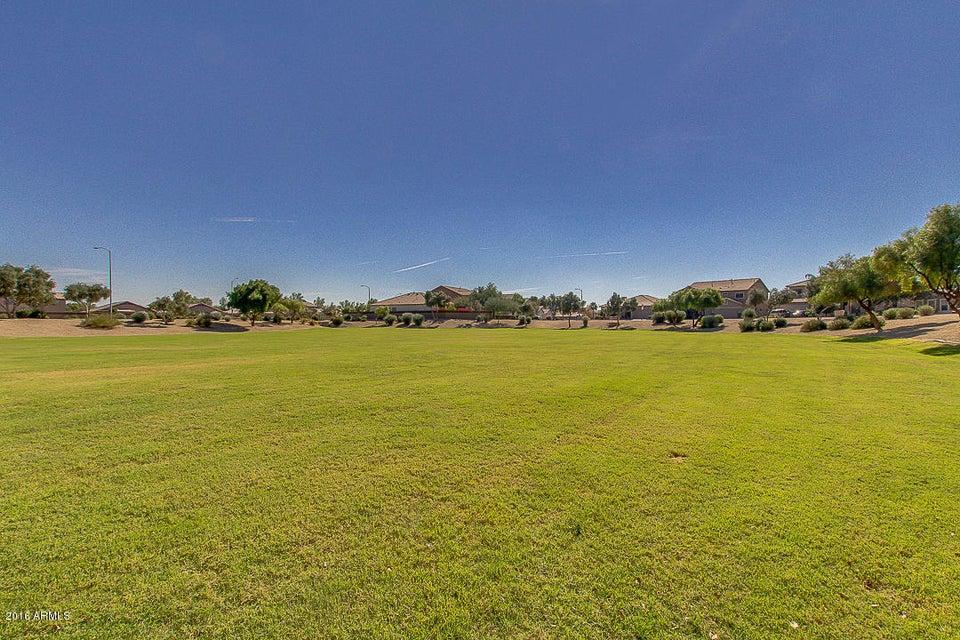 MLS 5511153 17411 W ELAINE Drive, Goodyear, AZ 85338 Goodyear AZ Cottonflower