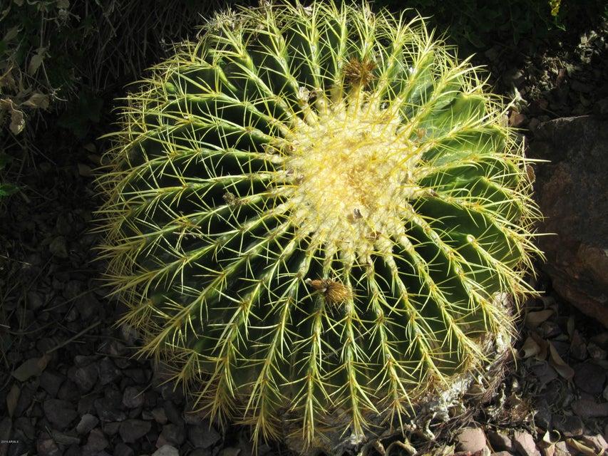 MLS 5532388 9607 N 100th Street, Scottsdale, AZ 85258 Scottsdale AZ Scottsdale Ranch