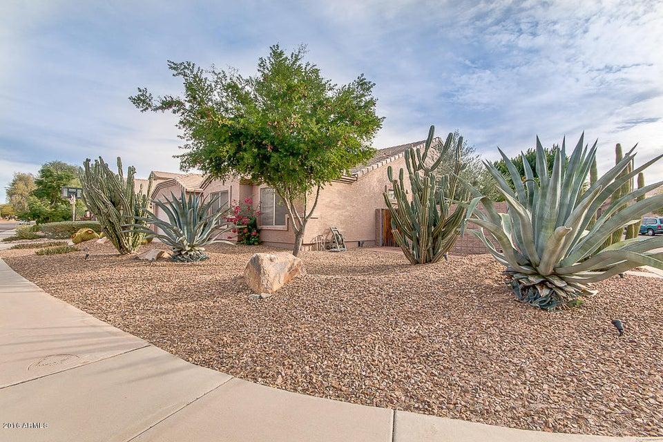 MLS 5532735 25809 N 43RD Place, Phoenix, AZ 85050 Phoenix AZ Tatum Highlands
