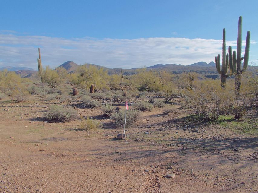 85X W Tellier Trail Lot 0, Wickenburg, AZ 85390