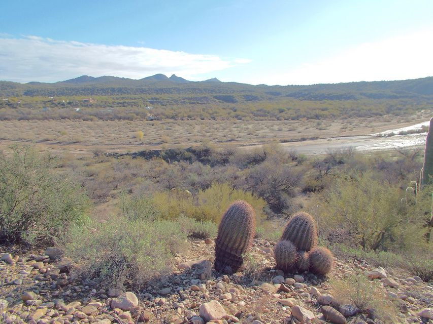 85X W Tellier Trail Wickenburg, AZ 85390 - MLS #: 5542401