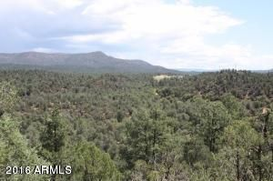 0 E Buckskin Lane Star Valley, AZ 85541 - MLS #: 5543944