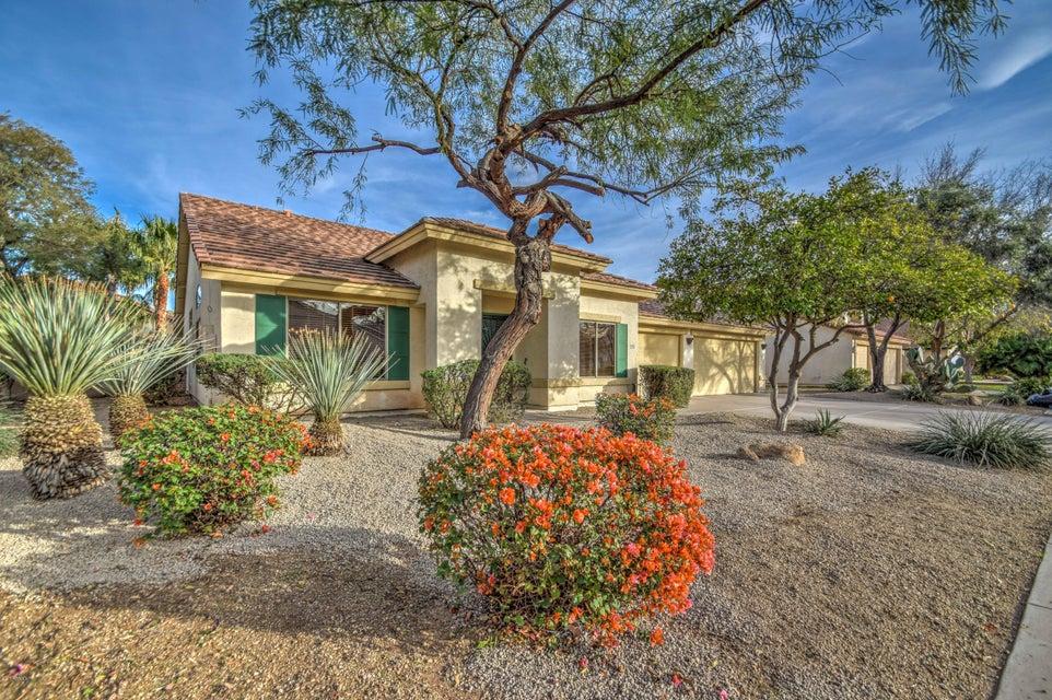 1805 S SANDSTONE Street, Gilbert, AZ 85295