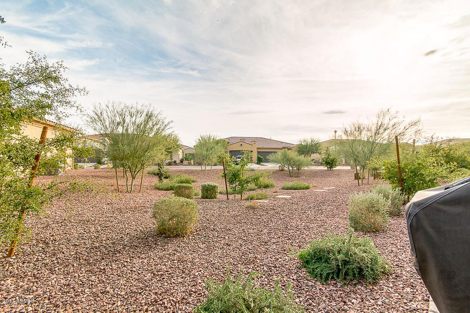 MLS 5544820 3967 N 164TH Drive, Goodyear, AZ Goodyear AZ Luxury