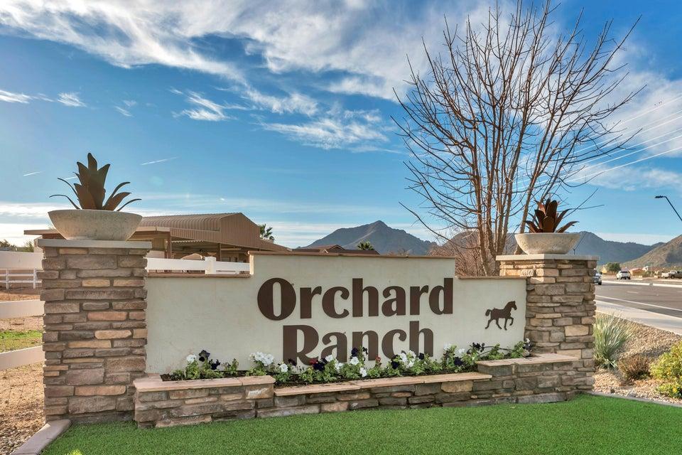 MLS 5546123 20911 E EXCELSIOR Avenue, Queen Creek, AZ 85142 Queen Creek AZ Orchard Ranch
