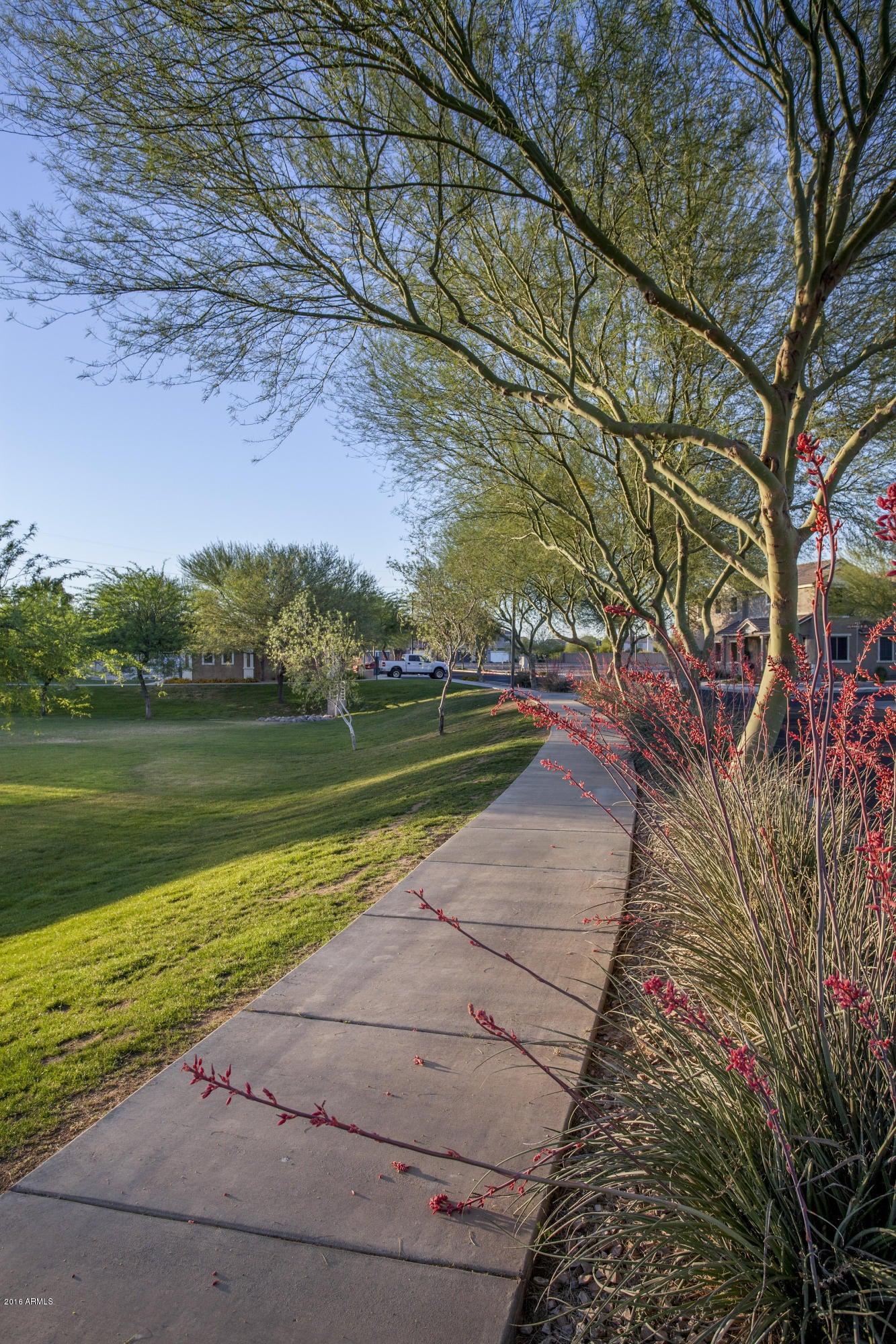 MLS 5548269 17769 N 114TH Drive, Surprise, AZ 85378 Surprise AZ Canyon Ridge West