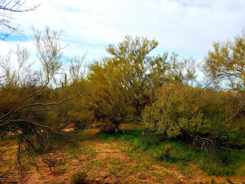 14214 E OLESEN Road, Scottsdale, AZ 85262