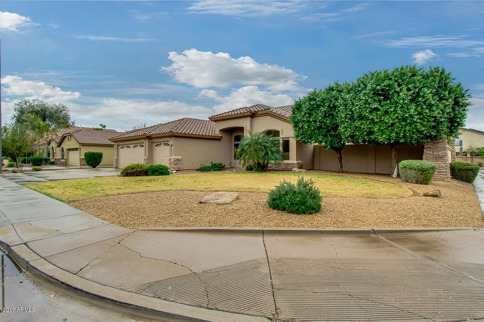 1337 E Loma Vista Street, Gilbert, AZ 85295