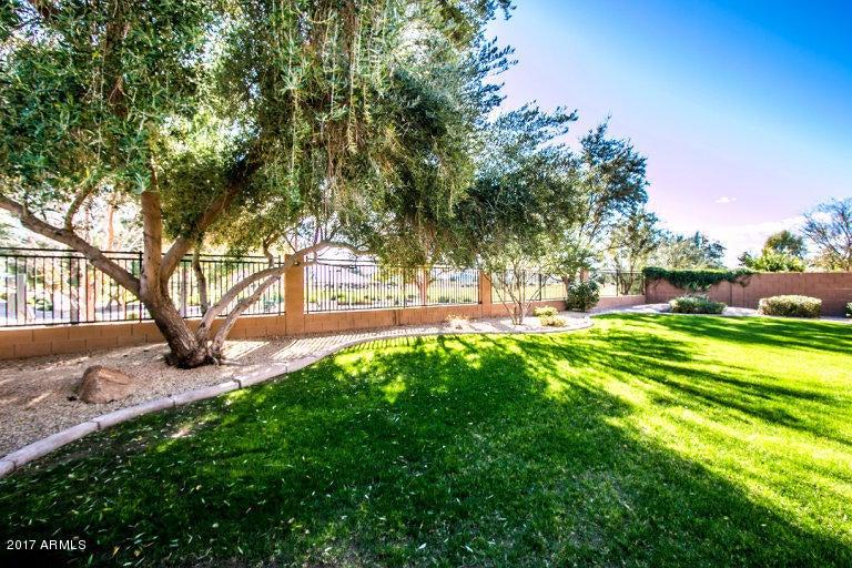 MLS 5553000 2241 E PALM BEACH Drive, Chandler, AZ Chandler AZ Cooper Commons