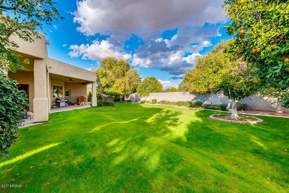 MLS 5551742 2121 N ORCHARD --, Mesa, AZ 85213 Mesa AZ Hermosa Vistas
