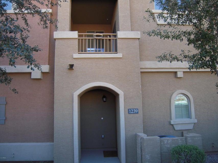 240 W JUNIPER Avenue 1239, Gilbert, AZ 85233
