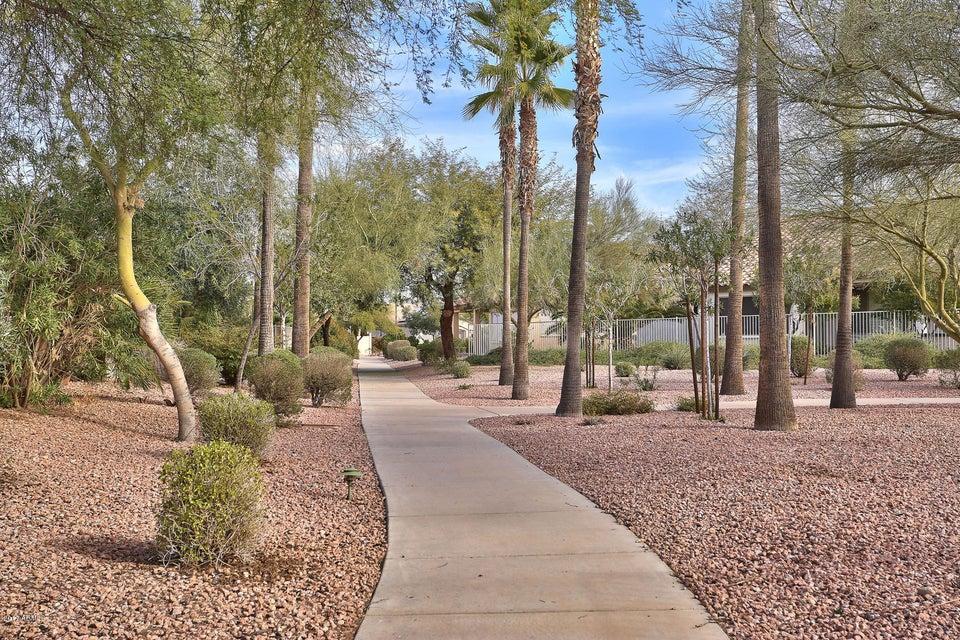 MLS 5557609 2633 N 159TH Drive, Goodyear, AZ 85395 Goodyear AZ Adult Community