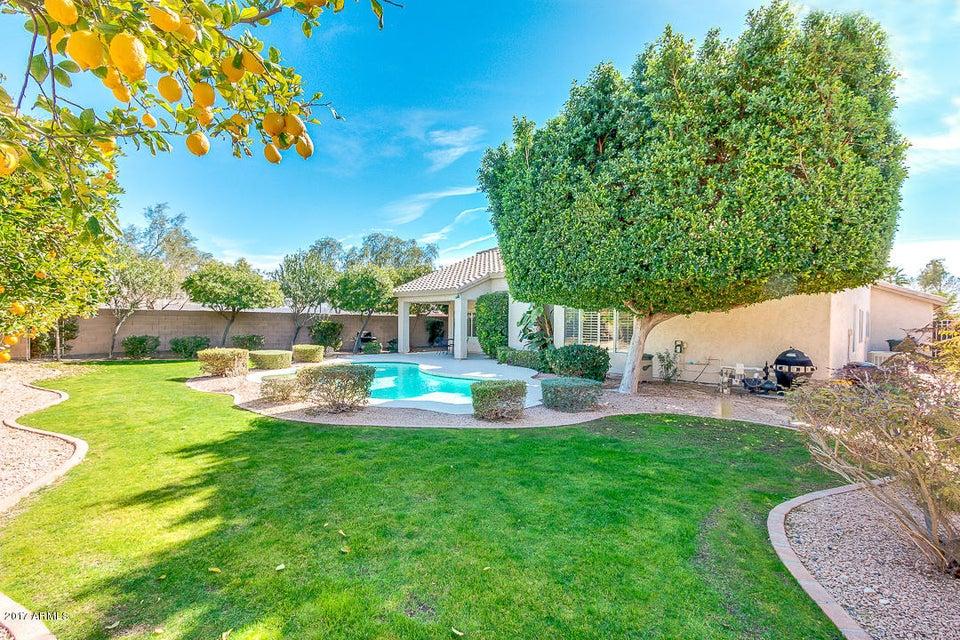 4626 E ROCKY SLOPE Drive, Phoenix, AZ 85044