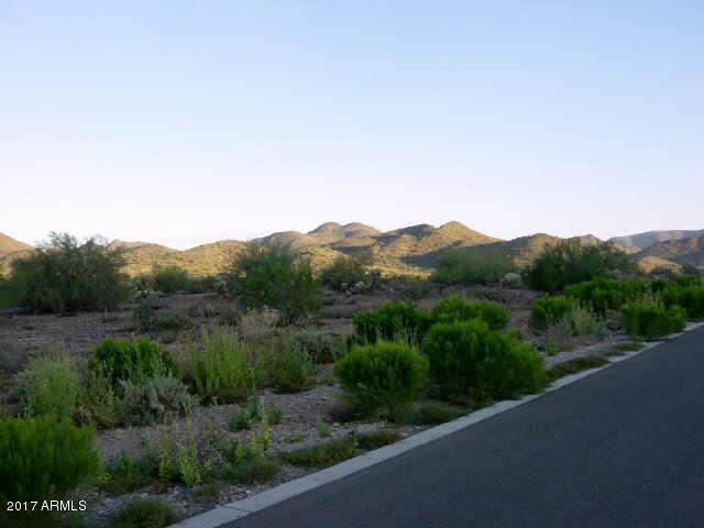 35905 N PRICKLEY PEAR Road Lot 89, Cave Creek, AZ 85331
