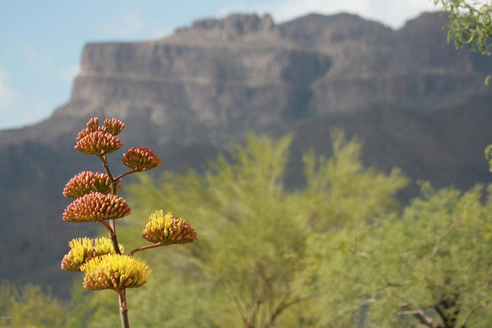 4002 S CALLE MEDIO A CELESTE -- Lot 52, Gold Canyon, AZ 85118