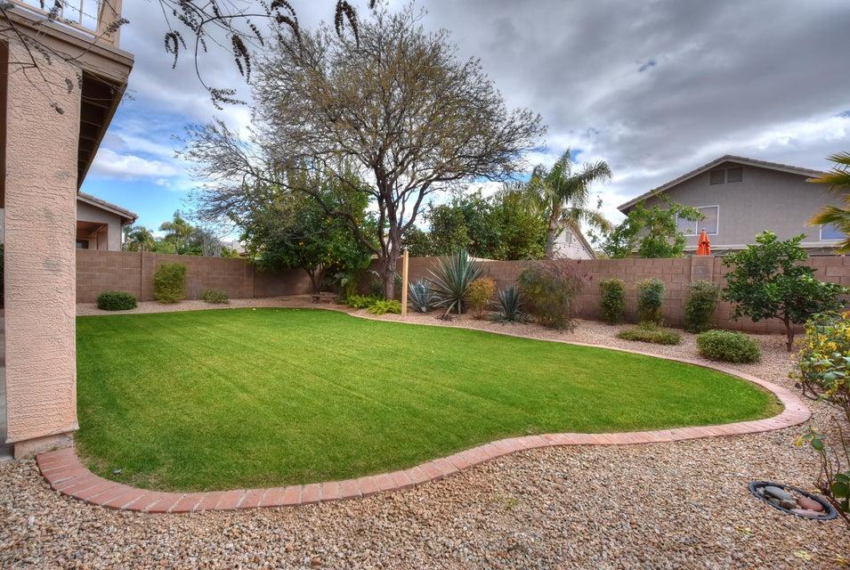 MLS 5564658 4359 E BRILES Road, Phoenix, AZ 85050 Phoenix AZ Tatum Highlands
