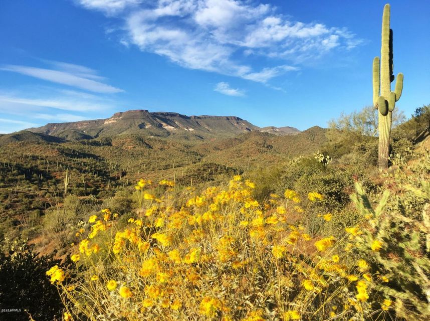 45043 N COTTONWOOD CANYON Road, Cave Creek, AZ 85331