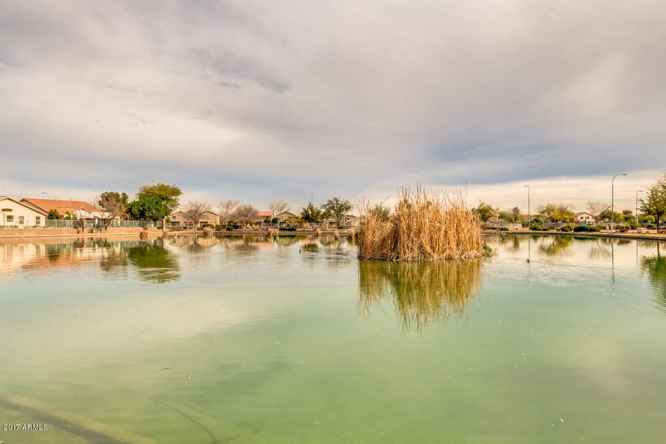MLS 5565026 2017 N 109TH Avenue, Avondale, AZ Avondale AZ Waterfront