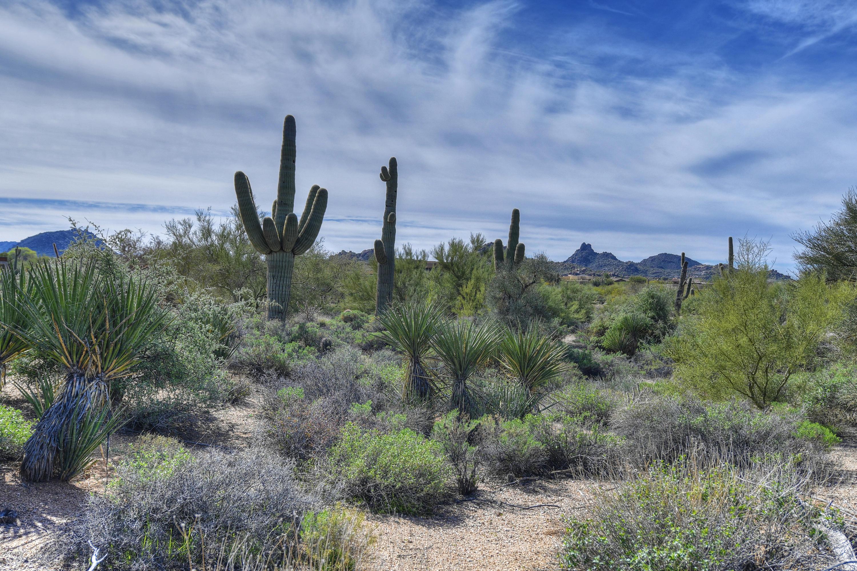 29037 N 106th Way Lot 45, Scottsdale, AZ 85262