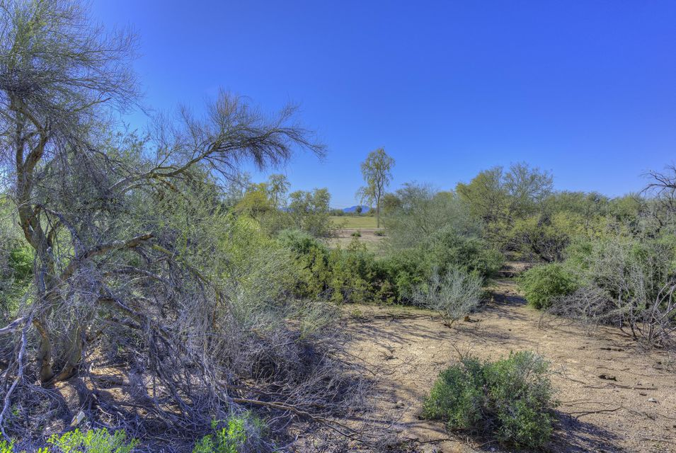 MLS 5572872 4379 E Lariat Lane, Phoenix, AZ 85050 Phoenix AZ Tatum Highlands