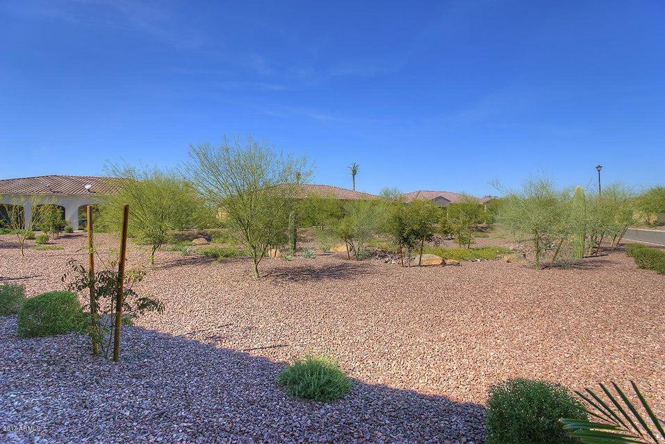 MLS 5573345 16356 W AMELIA Drive, Goodyear, AZ Goodyear AZ Luxury