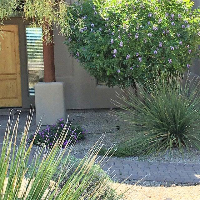 15121 E CABRILLO Drive, Fountain Hills, AZ 85268